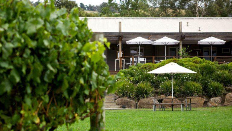 Greenstone FEATURE Vineyard Cellar Door 768x432