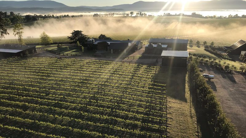 Yarra Valley Three-Day Trip – no experience unturned